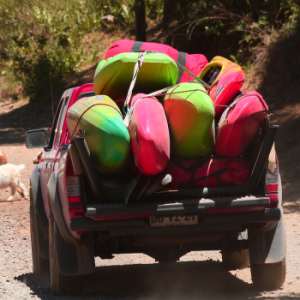 Kayakers pass a herd of goats on the Teacups shuttle in Chile's Central (wine) Valley.